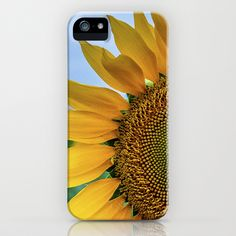 SunFlower iPhone & iPod Case by Richard Torres Photo - $35.00