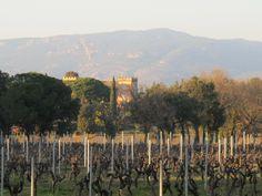 Château de Vaucouleurs. #sun #seasnowsun #tourisme #tourism #france #pacatourism #pacatourisme #PACA #provencal #tourismpaca #tourismepaca #vin #wine #oenotourisme #vitivinicole #vigne #raisins #grapes #vineyards #cave #chateau #vaucouleurs
