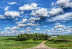 Minnesota farmland on Hwy 23...photo by Cyn...June 15' 2014