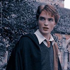 Harry James Potter, Harry Potter Icons, Harry Potter Aesthetic, Harry Potter Fandom, Harry Potter Characters, Hogwarts, Slytherin, Draco Malfoy, Hermione