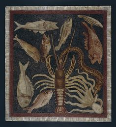 Central panel (emblema) from a mosaic showing marine life. Populonia. Tuscany, Italy