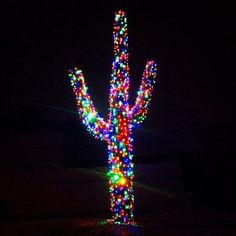 The Antsy Pants™ Mama and her Antsy Pants ™ Graduates are visiting family in Arizona this Christmas. I love these decorated Saguaro Cactus! LATEFEE http://shop.getantsy.com gives you a $3 discount on your order for every day we aren't shipping. Use it through midnight Jan. 2.
