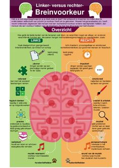 health education Left Brain vs Right Brain ~ Poster Brain Science, Brain Gym, The Brain, Brain Anatomy, Anatomy And Physiology, Left Vs Right Brain, Brain Poster, Poster Poster, Dyslexia