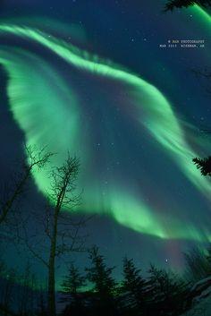 Aurora, Arctic Circle, Wiseman, AK
