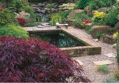 raise koi pond in your backyarad #koi  #koipond