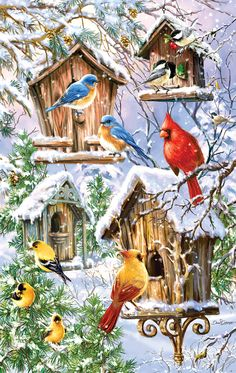 christmas drawings More new 2017 puzzles have been announced! You can add your favorites to your Christmas eve dreams of sugarplum fairies and jigsaw puzzles. SUNSOUT 2017 Sunsout has new releases thro Christmas Bird, Christmas Drawing, Christmas Scenes, Christmas Paintings, Vintage Christmas Cards, Christmas Pictures, Winter Christmas, Christmas Crafts, Christmas Decorations