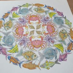 Johanna Basford   Colouring Gallery Colouring Pages, Coloring Books, Johanna Basford Coloring Book, Coloured Pencils, Ocean Art, Art Activities, Color Theory, Art Forms, Adult Coloring