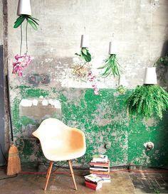 A Gardenroom like this.