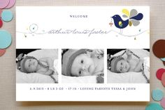 Little Bird Birth Announcements by Bonjour Paper at minted.com
