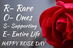 Read Here Best Happy Rose Day Shayari in Hindi, बेस्ट रोज डे शायरी इन हिन्दी with images for WhatsApp status 7 Feb, Gulaab Shayari for lover's and boyfriend & girlfriend -2021 Rose Day Shayari, Shayari In Hindi, Heart Touching Shayari, Status Hindi, Happy New Year, Flowers, Image, Top, Happy Year