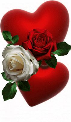 Relationship Love Quotes I Love You Love You Love Images Love Beast Mode Beautiful Love Pictures, Beautiful Gif, Beautiful Roses, Rose Images, Heart Images, Hearts And Roses, Red Roses, Animated Heart, Animated Gif