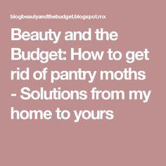 Meer Dan 1000 Idee N Over Pantry Motten Op Pinterest