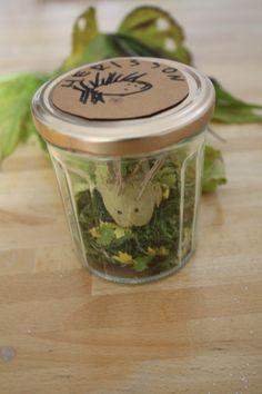 Hérisson hibernant dans un pot en verre avec de la pâte à modeler et des éléments naturels