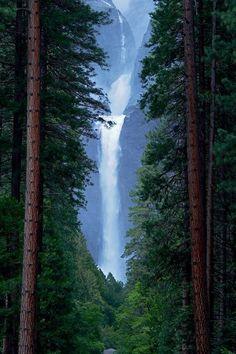Lower Yosemite Falls | USA by Joseph Urgo