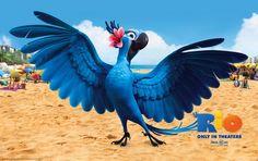 "Rio 3D Movie Art Print Wallpaper 22"" Poster 06 PhotoCloth"