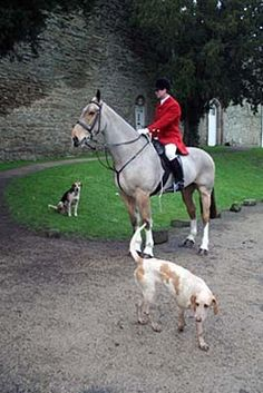 Blog - The Horse Card Shop...  Ludlow Hunt Boxing Day meet at Ludlow Castle 2012