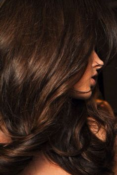 Gorgeous layered hair. Rich, sultry color. Maybe it's Brunettes who have more fun?