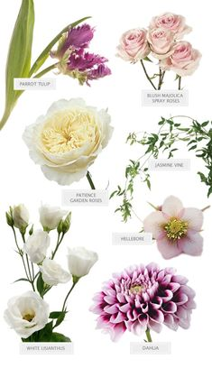 Essential white wedding flower guide names types pics a touch of purple bouquet perfect for your glam garden wedding mightylinksfo