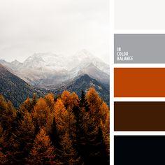 Photo by eberhard grossgasteiger on Unsplash Orange Palette, Orange Color Schemes, Orange Color Palettes, Black Color Palette, Colour Pallette, Coffee Colour, Color Balance, Color Studies, Warm Colors