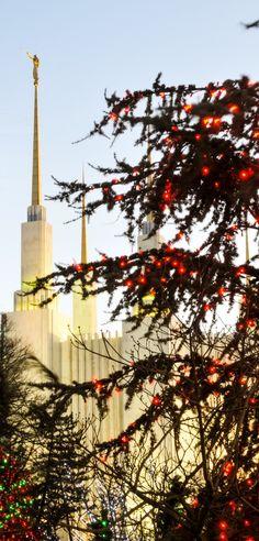Washington DC Temple - Christmas lights #LDS #Mormon