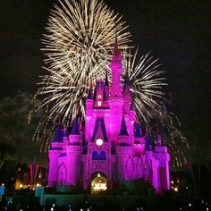 We first spent 2 days here. It is my favorite park. I went on all of the rides I wanted to go on. We watched the electrical parade too.