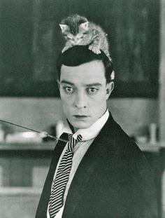Buster Keaton. #iLoveAnimalsToo #ancheIoAmoGliAnimali #yoTambienMeEncantanLosAnimales
