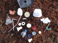 Scientists have been finding little bits of plastic in a lot of places lately: ice cores, deep sea sediments, coral reefs, the digestive system of mussels, even German beer.   Accidental finding of plastic in the skin of both farmed and wild fish, published online this month in the supplementary section of their unrelated peer-reviewed paper, adds to already growing environmental and public health concerns about the plastic particles pervading our oceans and waterways.  #Plastic #Pollution