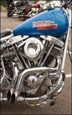 BORN TO RIDE sticker decal vinyl chopper harley davidson bobber diy offroud car