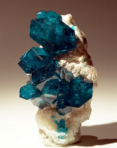 Dioptase by usageology via Flickr | Locality: Tantara Mine, Kakounde, Likasi, Shaba Congo D.R. Size: 1.2 inches tall.