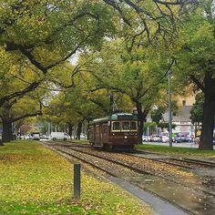 One of Melbourne's Vintage Trams, Victoria Parade, Melbourne, Victoria
