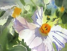 watercolor flowers by shari