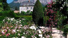 Meylan - Parc du Bachais - L'important c'est la rose