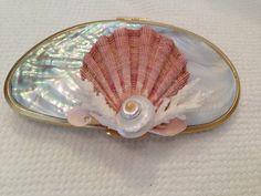 Shell clutch by Robin Grubman Grubm5@yahoo.com
