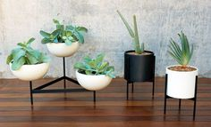 we're giving away a mid-century modern white case study planters this week!