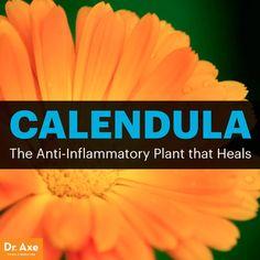Calendula: The Anti-Inflammatory, Antiviral Healing Herb- Dr. Axe