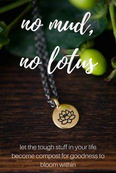 no mud, no lotus.