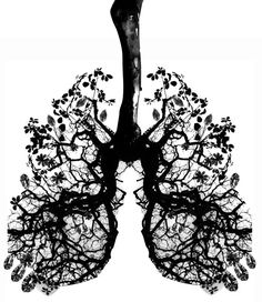 Tree / Lungs.