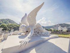 https://flic.kr/p/QAzwH5 | Dor | Ontem, com 50°C, o anjo não aguentou e caiu...  No Cemitério São João Batista.  Botafogo, Rio de Janeiro, Brasil. Tenha um belo dia.  _____________________________________________  Pain  Yesterday, with 122° F, the angel could not stand and fell down...  At Cemitério São João Batista Cemetery.  Botafogo, Rio de janeiro Brazil. Have a nice day.