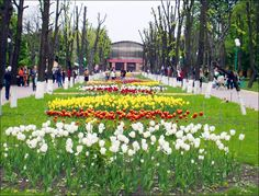 kirovograd ukraine | kirovograd-ukraine-city-views-39.jpg