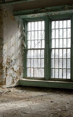 America's Abandoned Asylums | The 16 Best Photo Essays Of 2013 | Co.Design | business + design