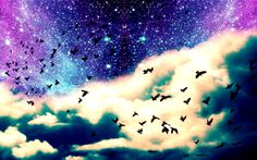 AMAZING  starey night sky with birds. {~follow my board wallpapers for more!~}