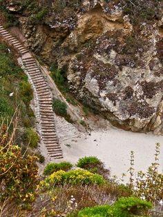 Point Lobos State Reserve, Carmel, CA: trail to hidden beach
