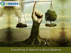 Everything in #Nature is about balance.