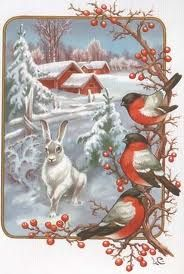 Robins And Rabbits, Red Berries On White, We're Having A Snowy White Christmas Tonight ~ Vintage Christmas Greetings Christmas Bird, Christmas Scenes, Christmas Past, Retro Christmas, Christmas Greetings, White Christmas, Vintage Christmas Images, Vintage Holiday, Christmas Pictures