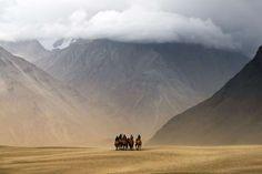 Nubra Valley, India - www.tonnaja.com - Getty Images