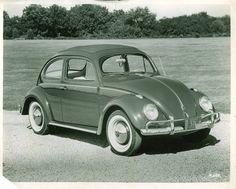 VW Käfer photo 05