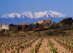 Le Canigou, Pyrénées-Orientales, France