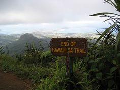 Hawaii Loa Hike End of Trail Overlooking Kailua and Kaneohe