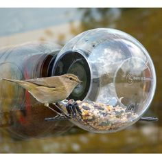 Window-mounted birdfeeder ||  This could be cool.... this could also end up with a lot of bird shit on your windows, but maybe that's worth the view of having birds up close! : )