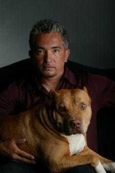 cesar's dog daddy | Dog whisperer Cesar Millan: Hollywood is full of predators